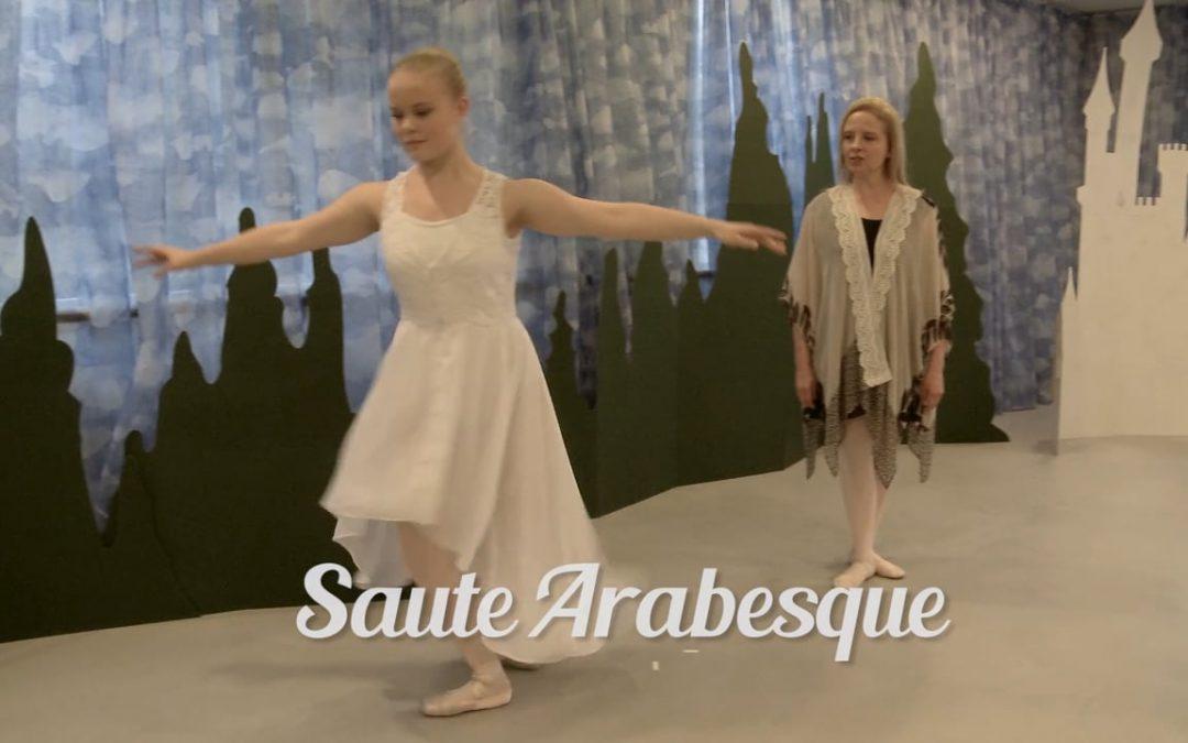 The Swan Princesses/Ballet Technique